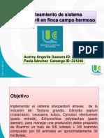 silvopastoril (1)