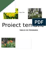 3 Proiect Tematic Primavara