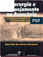 SIDERURGIA_E_CARVOEJAMENTO_NA_AMAZONIA_d.pdf