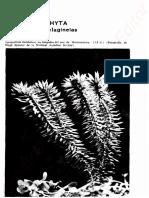 Cronquist Introduccion a La Botanica Licopodiophyta