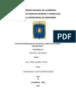 COSTROS PRODUCCION DE LECHE.docx