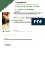 Introduction to OpenBridge Modeler v10.04 TRNC03273-1-0002.pdf
