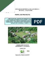 proyecto ayacucho.pdf