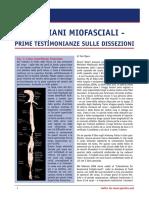 Meridiani Miofasciali - Anatomy Trains