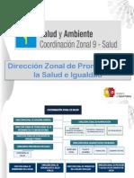 LINEAMIENTOS CZ9 SALUD Y AMBIENTE 2017 Distritos.pdf