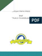 Brief (2).pdf