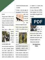 Aepuma Triptico PDF
