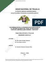 DETERMINACION SISTEMA CASA GRANDE.pdf