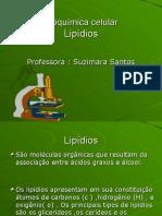 bioquimica celular lipidios.ppt