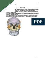 17503118 Guia 10 Terapia Osteoartrologia de Cabeza