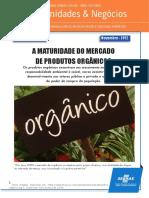 SEBRAE Mercado de Organicos
