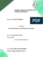Investigación_ Funciones Biologicas y La Importancia de Las Proteinas.