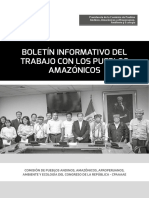 Boletín Informativo de la Comisión de Pueblos - Abril 2019