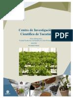cicy habanero.pdf