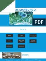 Virus Marburgo Nicc 2.0