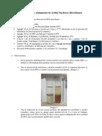 P14 Aislamiento DNA Microbiano