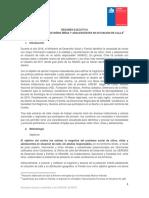 Resumen_Ejecutivo_Conteo_NNASC_05.05.2019