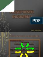 Presupuesto Industrial