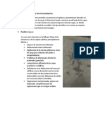 PAV,_FLEXIBLE-OTUZCO[1].docx