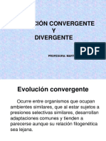 evolucio n convergente y divergente.ppt