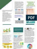 folleto ejecución presupuesto
