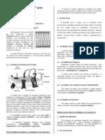 Citoplasma_nucleo_1 ano.docx