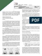 318642752-Guia-Generacion-Espontanea-Para-Imprimir.doc
