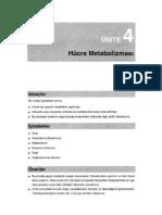 GENETİK Hücre Metabolizması