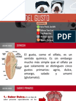 Anatomia Aaaaa