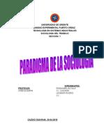 Ensayo Paradigma de La Sociologia