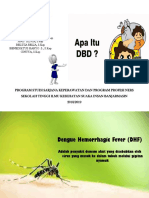PPT DHF asique