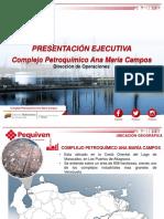 Complejo Ana María Campos - Descripción Procesos Plantas
