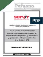 Directiva Cuadro de Puestos El Peruano 131115