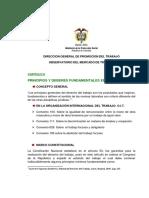 2-PRINCIPIOS-Y-DEBERES-CONSTITUCIONALESLABORALES.pdf