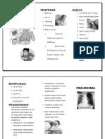 Leaflet-Pneumonia.doc