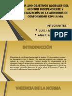 Nia 200 Objetivos Globales Del Auditor Independiente y