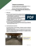 TdR_GANADO-PACHACHACA.docx