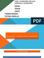 Estructurayfuncionesclulasprocariotasyeucariotas 150802014841 Lva1 App6891