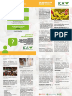 Plegable-Aviar-Salmonelosis.pdf