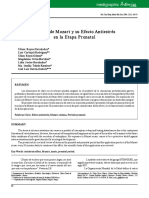 bis062g.pdf