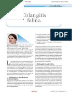coliangitis felina.pdf