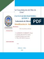 Informe Nº9 Superficies Vivas
