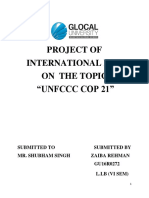 0_international Law Project 1