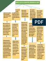 Mapa Conceptual Tecnicas Evaluacion de Servicio, Ciclo de La