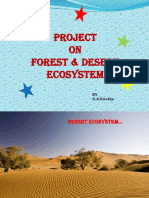 Forest and Desert