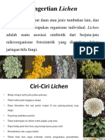 Pengertian Lichen