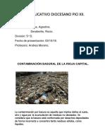 PROYECTO POLITICA Y GESTION AMBIENTAL.docx
