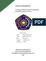 2. Identifikasi Senyawa Golongan Glikosida Saponin, Triterpenoid Dan Steroid (Ekstrak Sapindus Rarak DC)