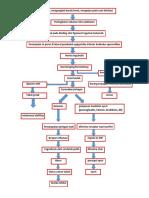 Patoflowdiagram HIL