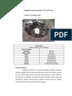 Deskripsi Foraminifera Plangtonik Fix